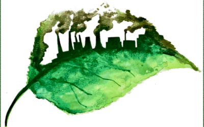 The Purpose and Corporate Strategy for a Sustainable Economy